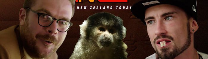 Man Steals Monkey from a Zoo | New Zealand Today - Season 2